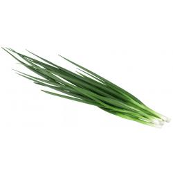 """Лук """"зеленый"""" 1 кг."""